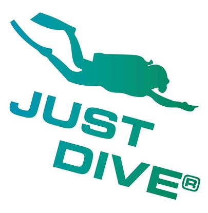 Picture of Tattoo, NAUI Just Dive- Diver
