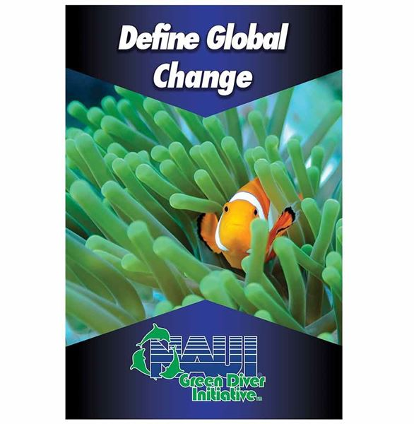 Poster, Green Diver